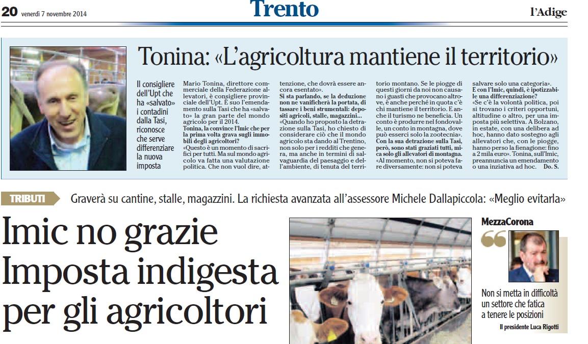 Tonina sull'Adige del 7 11 2014